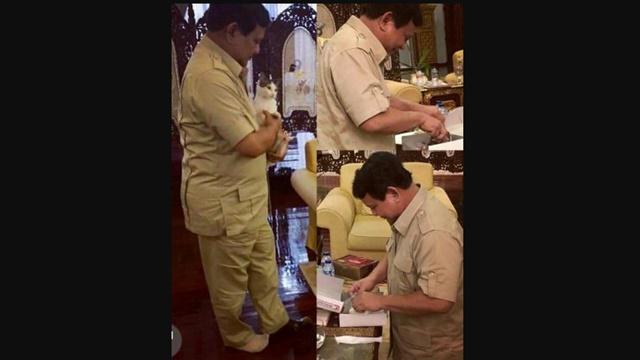 Disebut 'Jenderal Kardus', Akun Prabowo Unggah Foto Gendong Kucing dan Nasi Kotak
