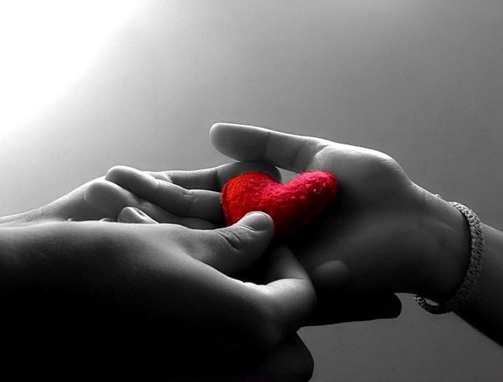 Sim,eu quero um amor