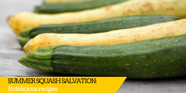 Summer squash overload? These recipes will be your salvation!