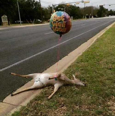 Funny Dead Deer Roadkill Get Well Soon Balloon