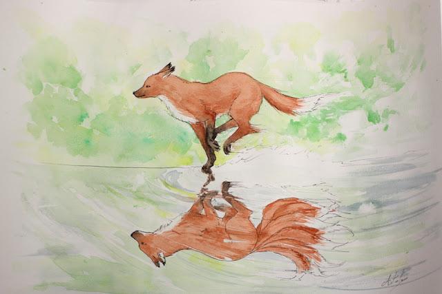 aquarelle représentant un renard courant et son reflet