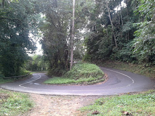 http://mengenalbengkayang.blogspot.co.id/2017/01/jalan-vandreng-dan-bukit-vandreng.html