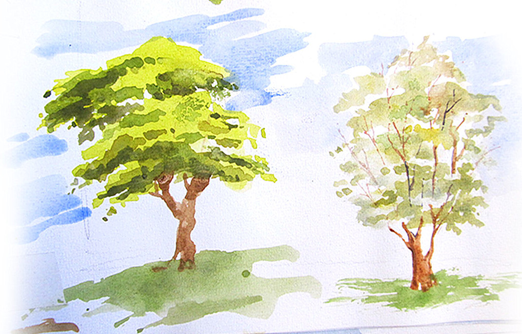 Tree-Watercolor-Sketchbook