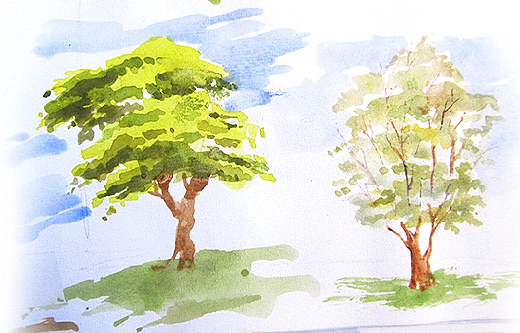 Tree-Watercolor-Sketchbook