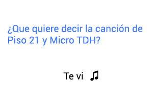 Significado de la canción Te Vi Piso 21 Micro TDH.