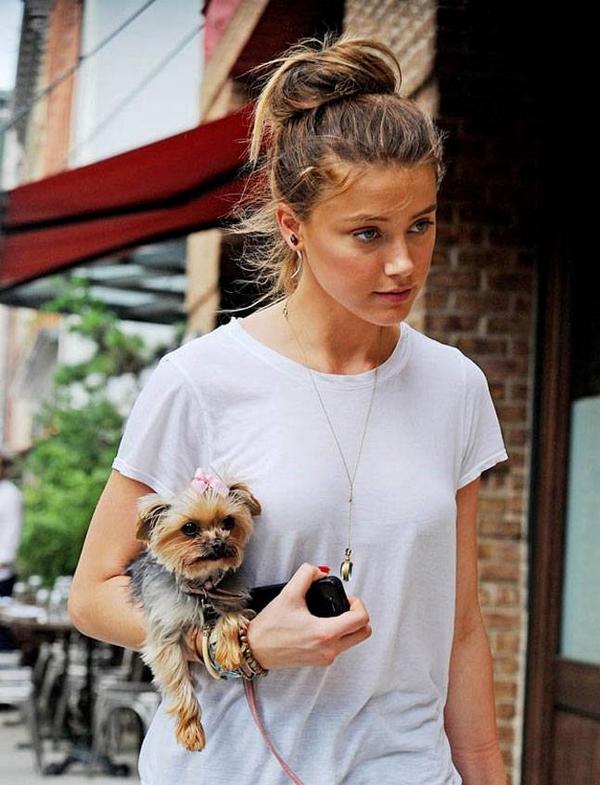 Amber Heard street style dog