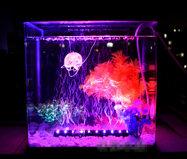 Small glass betta aquariums fish tank with light art for Fish tank lighting