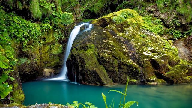 Waterval in een tropisch regenwoud