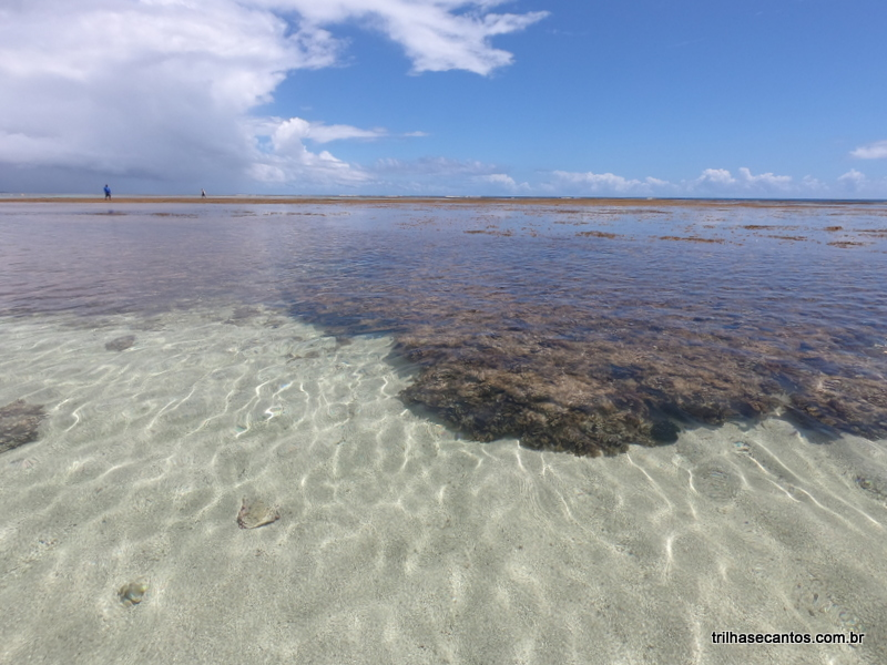 Boipeba Passeio Volta à Ilha