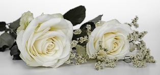 Lettera Per La Migliore Amica Che Si Sposa Auguri Speciali Per Un
