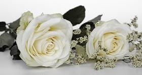 Frasi Per Un Matrimonio Speciale.Lettera Per La Migliore Amica Che Si Sposa Auguri Speciali Per Un