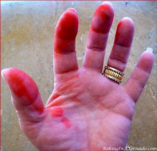 Red food coloring disaster | picture property of www.BakingInATornado.com | #humor #funny