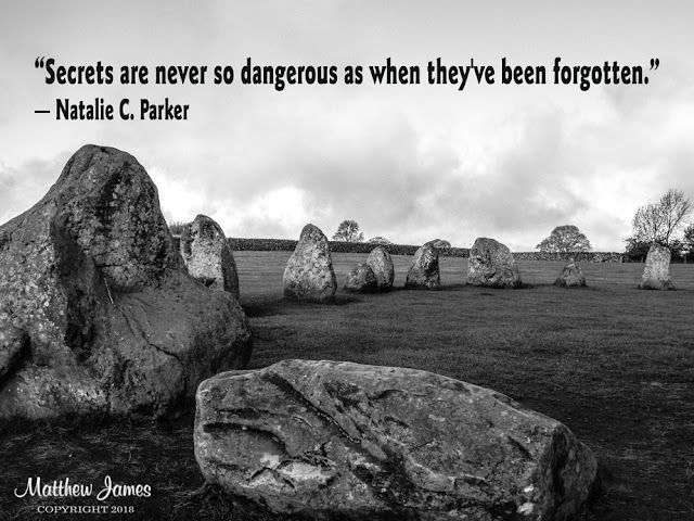 """Secrets are never so dangerous as when they've been forgotten."" ― Natalie C. Parker"