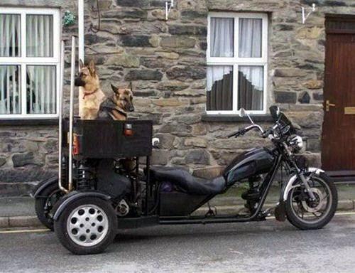 Ide Modifikasi Motor Paling Unik Sepanjang Masa
