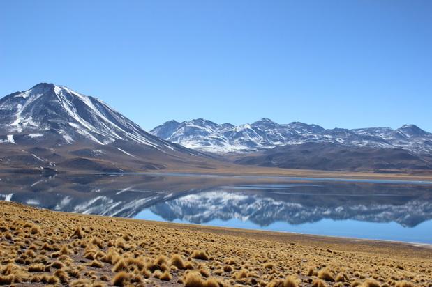 Lagunas Altiplãnicas, Deserto do Atacama