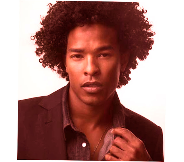 African American Male Hairstyles Names Photo Picture