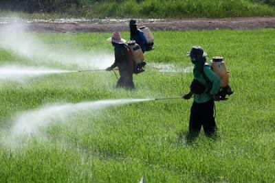 Brasil é no 10º ano seguido o maior consumidor de agrotóxicos