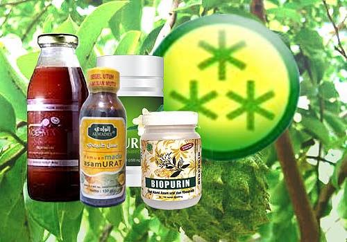 Obat Asam Urat Dari Bahan Herbal