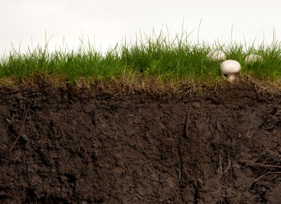 Proses dan Faktor Pembentuk Tanah