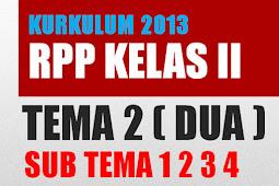 RPP Kurikulum 2013 Kelas 2 SD Tema 1 Subtema 1 ,  2, 3, 4