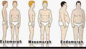 Plush Styles: Men Style: Do You Know Your Body Shape?
