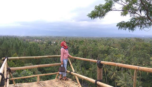 Wisata Bukit Mondoleko Banyuwangi