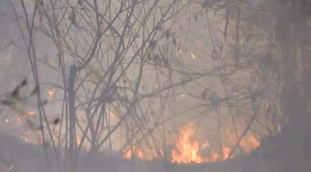Número de incêndios registrados em vegetação entre agosto e outubro é cinco vezes maior que no mesmo período de 2017 (Foto: Reprodução/ TV Santa Cruz)