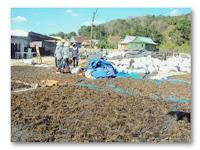 Tingkat Kekeringan Rumput Laut Merata Dengan Mengaplikasikan Plastik UV 6%