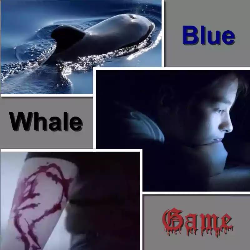 Blue Whale Challenge: Deadly Experiment EXPOSED   Random Tyms