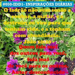 050-IDD1- Ideia do Dia 1