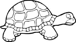 Lazy Turtle Coloring Pages For Kids