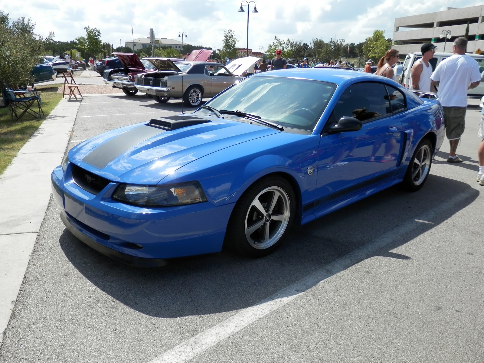 Shifting gears random car wednesday 2004 ford mustang mach 1
