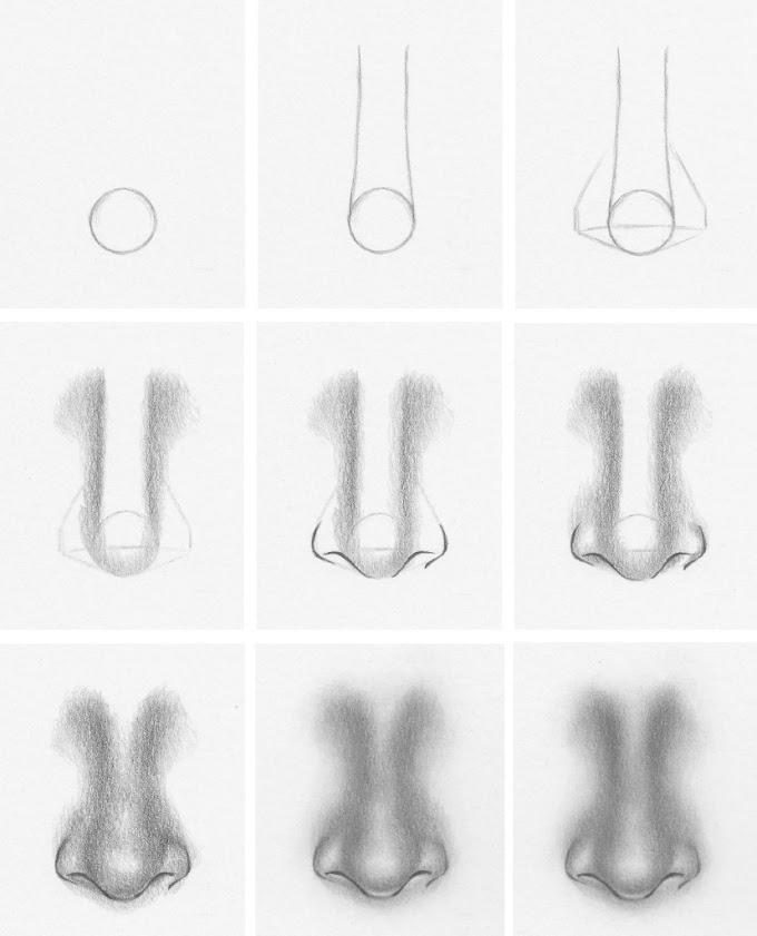 كيف ترسم الأنف بالقلم الرصاص