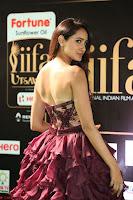 Pragya Jaiswal Sizzles in a Shantanu Nikhil Designed Gown  Exclusive 019.JPG