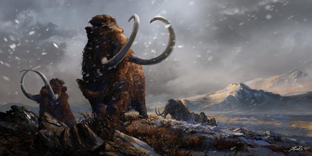 Mamut Berbulu