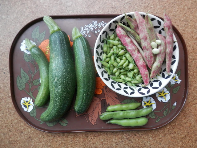 My homegrown harvest, July 2017.  From UK garden blogger secondhandsusie.blogspot.com #gardening #gardenblogger #permaculturegarden #suburbanpermaculture #harvest