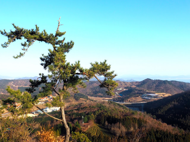 View of the countryside from the observation point at the top of Boseong Green Tea Plantation, South Korea