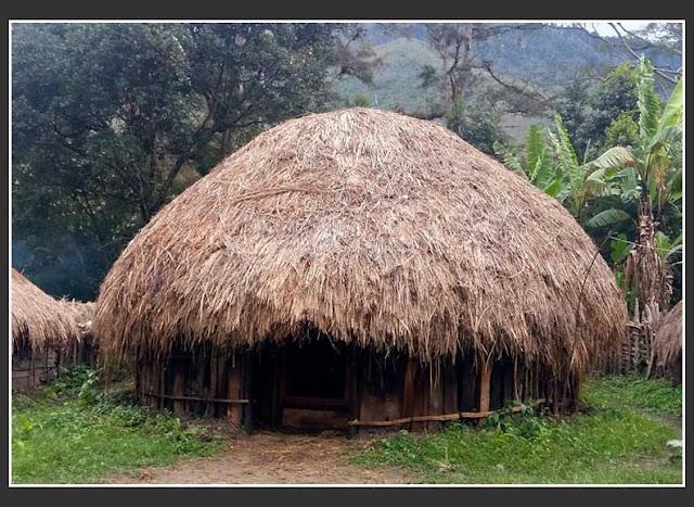 Gambar Rumah Honai Rumah Adat Papua