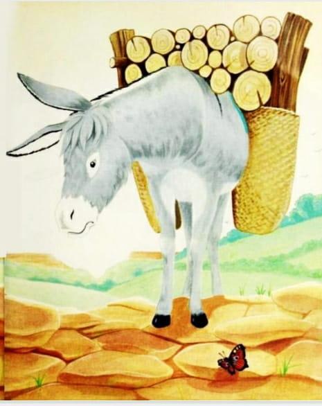 छोटे गधे ने मदद करना सीखी - Chote Gadhe Ne Madat Karna Shikha