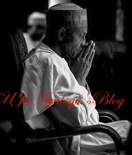 """Buhari'll Be Back Soon"" – NANS President"