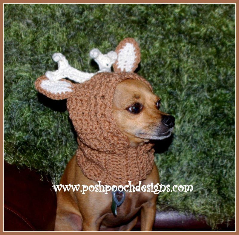 Posh Pooch Designs Dog Clothes New Pattern Releases More Dog