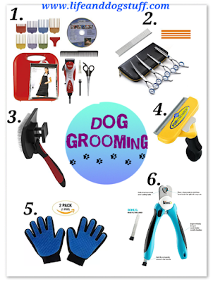 Best Dog grooming supplies.