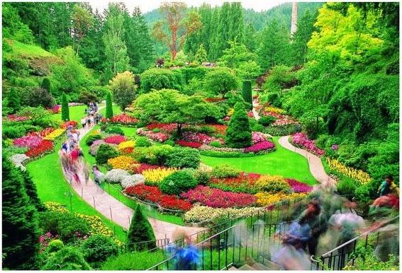 Taman Bunga Paling Cantik Di Dunia Butchart Gardens Penamerah