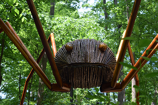David Rogers' Big Bugs | Fernbank Museum of Natural History | Photo: Travis Swann Taylor
