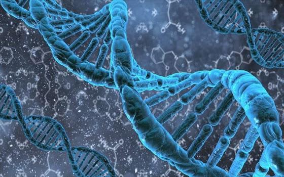 Γονιδιακή θεραπεία βάζει τέλος στην κληρονομικότητα μεταβάλλοντας το DNA