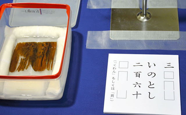 Haul of feudal coins discovered in Japan