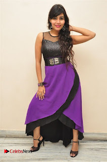 Telugu Actress Rachana Smith Stills at Money is Honey Audio Release  0039.jpg