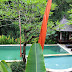 HVS197 - GOOD QUALITY VILLA IN RIVERSIDE WITH RICEFIELD AND FOREST VIEW NEAR OF TANAH LOT - BALI