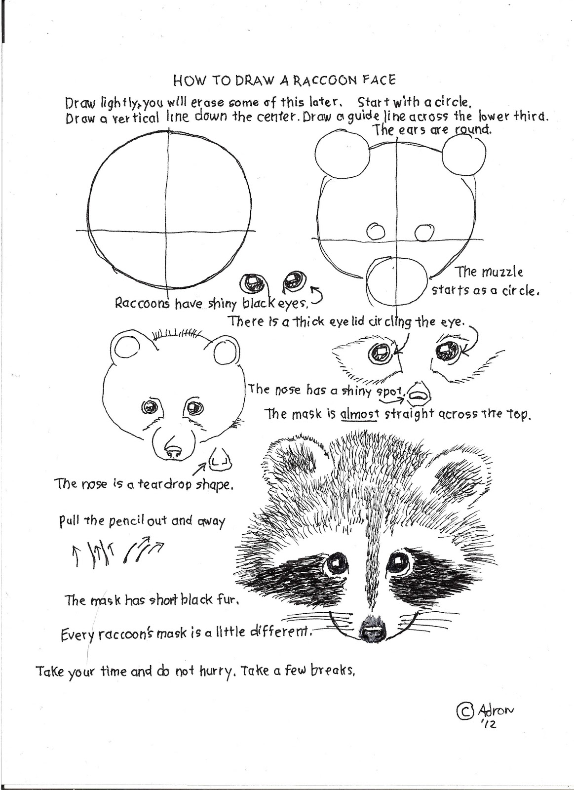 how to draw a raccoon worksheet