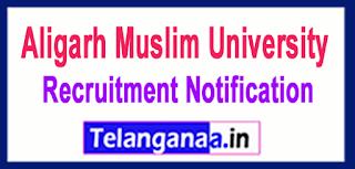AMU Aligarh Muslim University Recruitment Notification 2017 Last Date 05-06-2017